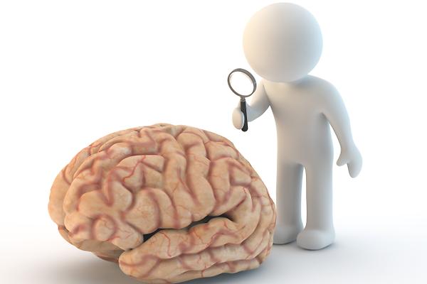 Curso Neuroanatomía Universidad de Sucre